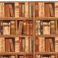 A year of books en Facebook